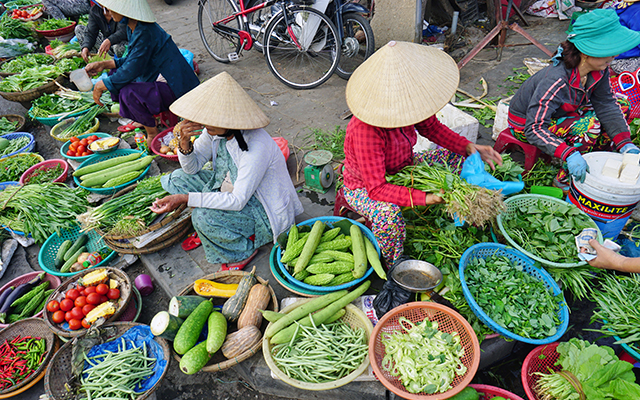 Hoian Cooking Tour