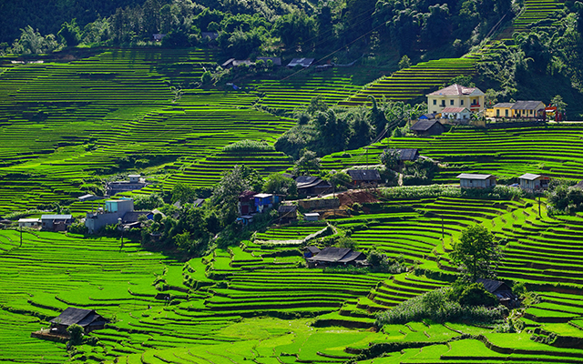 Sapa in Green Season