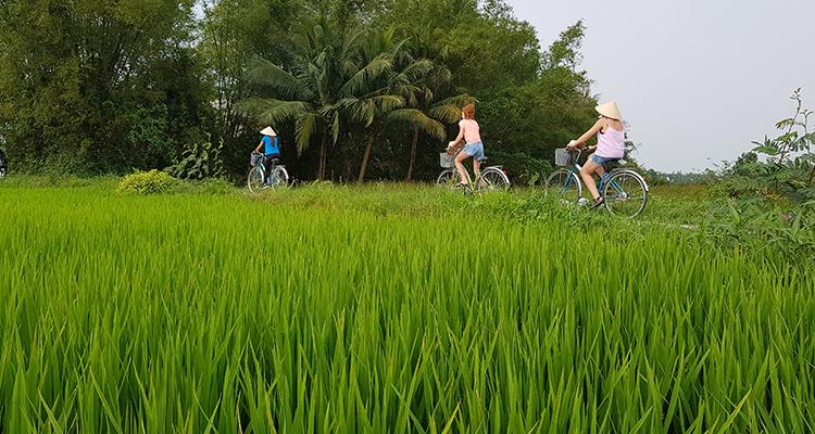 Biking-in-Hoian-countryside