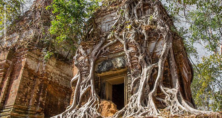 Day 1: Arrive in Siem Reap.