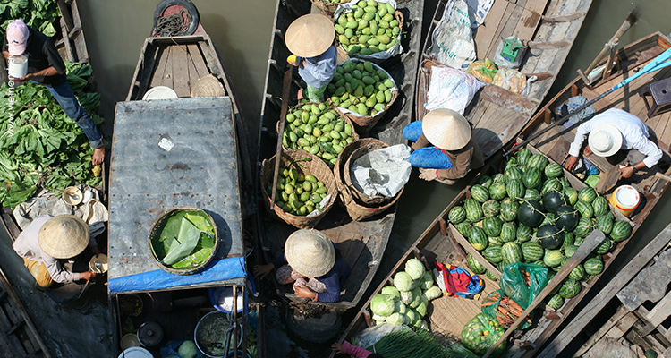 Day 3: Ho Chi Minh City – Mekong Delta – Overnight on river cruise.