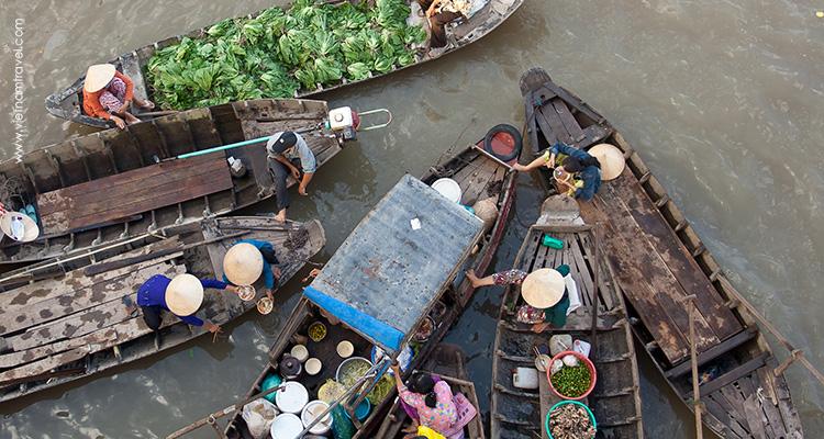 Day 5: Chau Doc – Tra Su Flooded Forest – Can Tho.