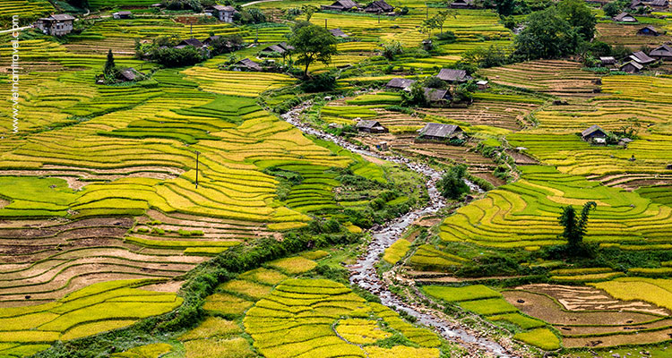 Day 6: Sapa – Trekking to Hill tribe villages – Night train to Hanoi.