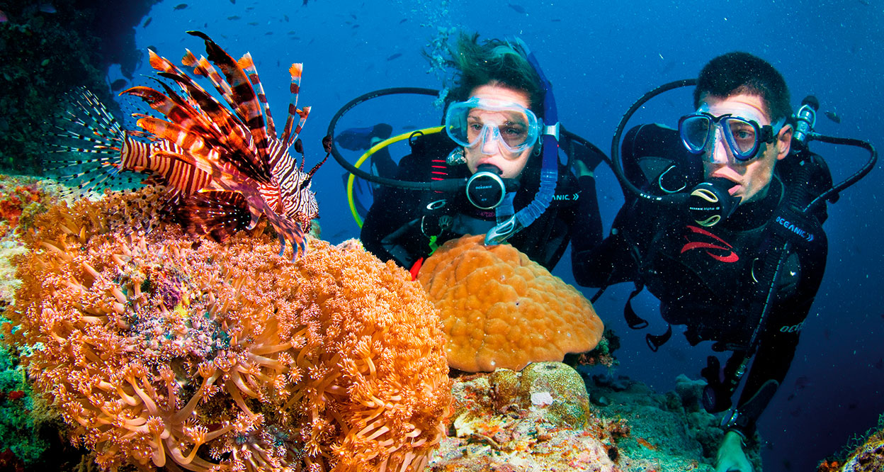 Snorkeling and Diving in Phu Quoc Island