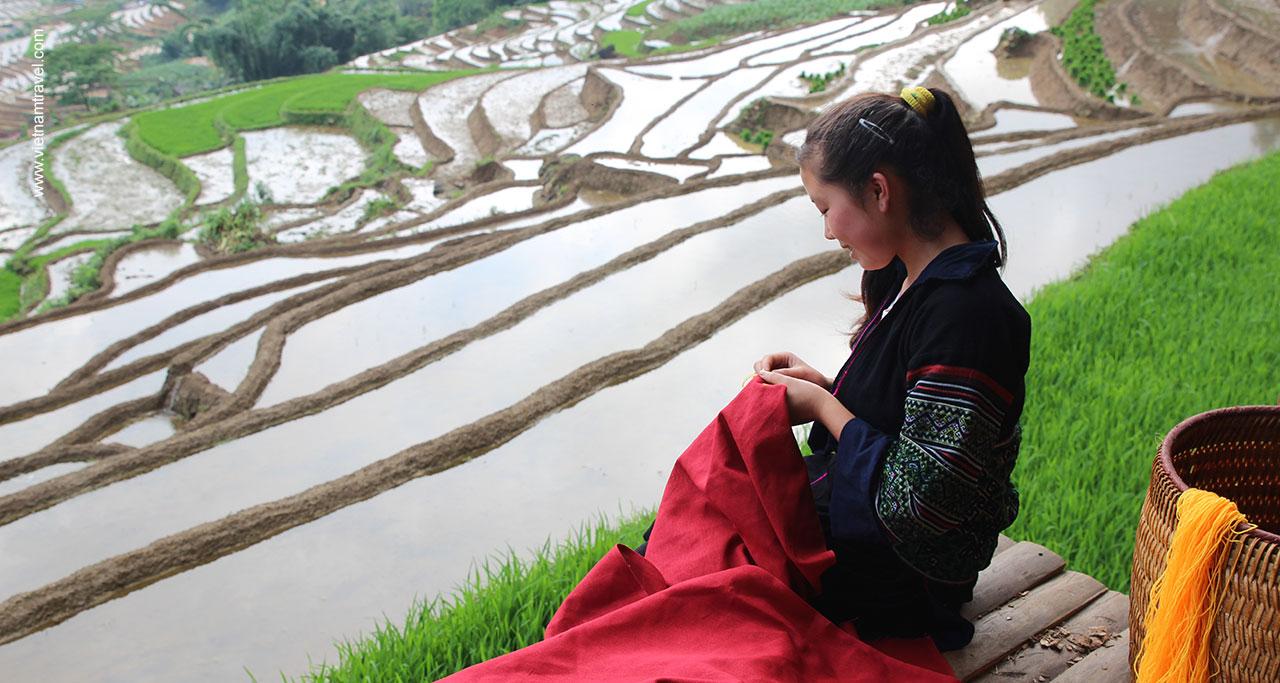 Rice Terrace in Sapa Vietnam