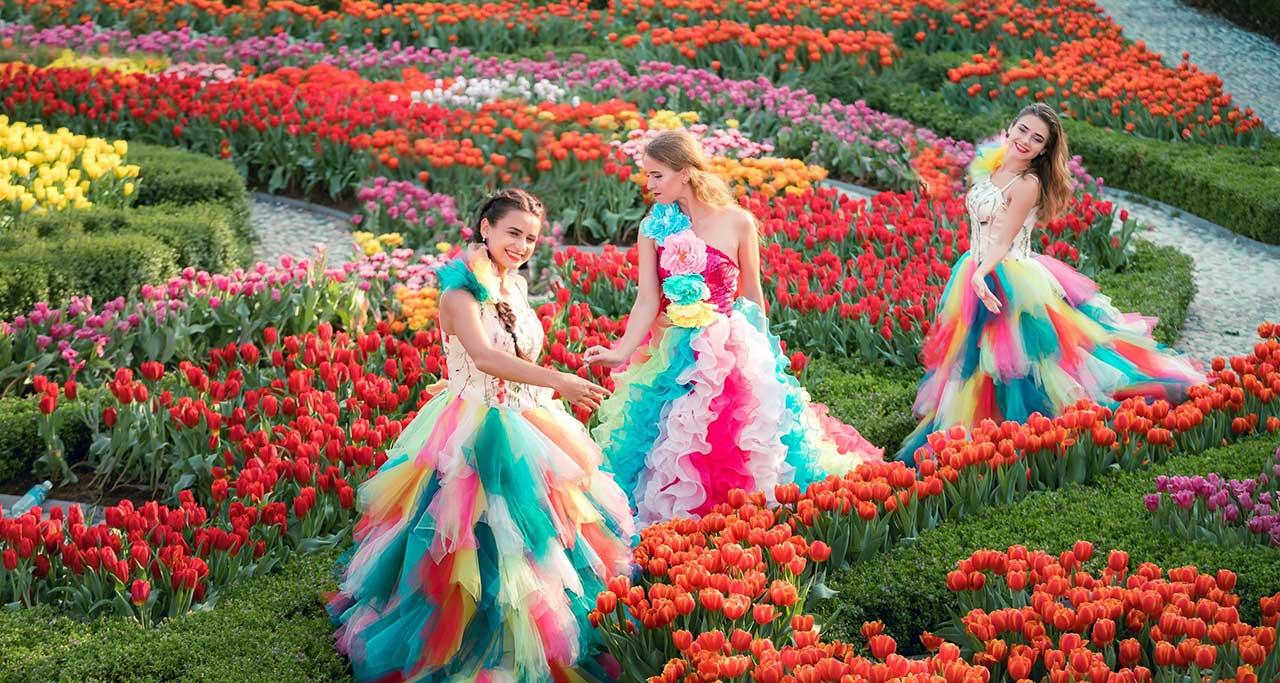Images for flower ba na hills