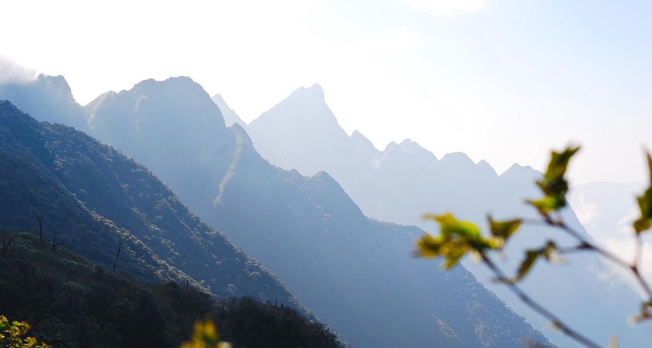 the beauty of Hoang Lien Mountain