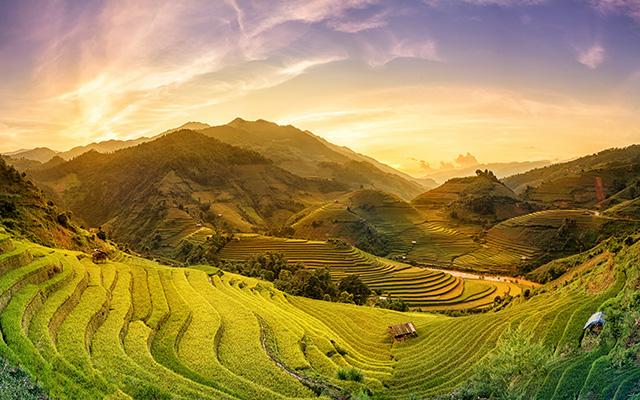I migliori viaggi privati da cercare prima di viaggiare in Vietnam