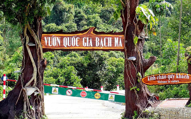 Bach Ma National Park: How to get there and What to do?